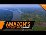 Deforestation in Brazil's Amazon drops for the first time in three years