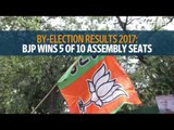 Bypoll results: BJP wins in 5 seats, Congress in 3
