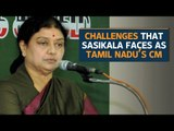 What are the challenges for Tamil Nadu's chief minister-elect Sasikala Natrajan?