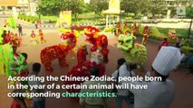 Chinese New Year: What is the Year of the Dog?