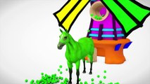 Learn Colors With Pig Cow Horse & Learn Name Animals Windmill Toys Fun Videos For Kids