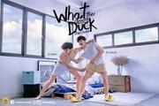 │BL│WHAT THE DUCK - Ep.09(Sub.Español)
