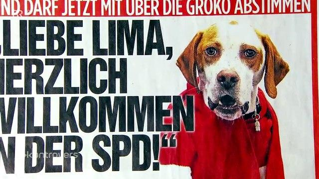 Nachschlag: Von hündischen SPD-Mitgliedern, Imagetouren und mehr …
