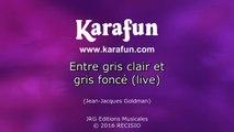 Karaoké Entre gris clair et gris foncé (live) - Jean-Jacques Goldman *