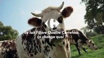 Le lait Filière Qualité Carrefour, ça change quoi ? Carrefour, meilleur chaque jour (pub TV 2017)