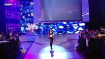 BRIE BELLA VS KATIE LEE - WWE SUPERSTARS - WWE Diva Wrestling Sports Fight Fighting MMA
