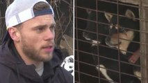 Olympian Gus Kenworthy Visits Korean Dog Meat Farm: 'I Am Heartbroken'
