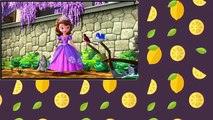 Sofia the First S04E15 The Mystic Isles The Great Pretender