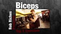 5 Beginner Bicep Exercises - Bodybuilding Workout Videos For Beginners