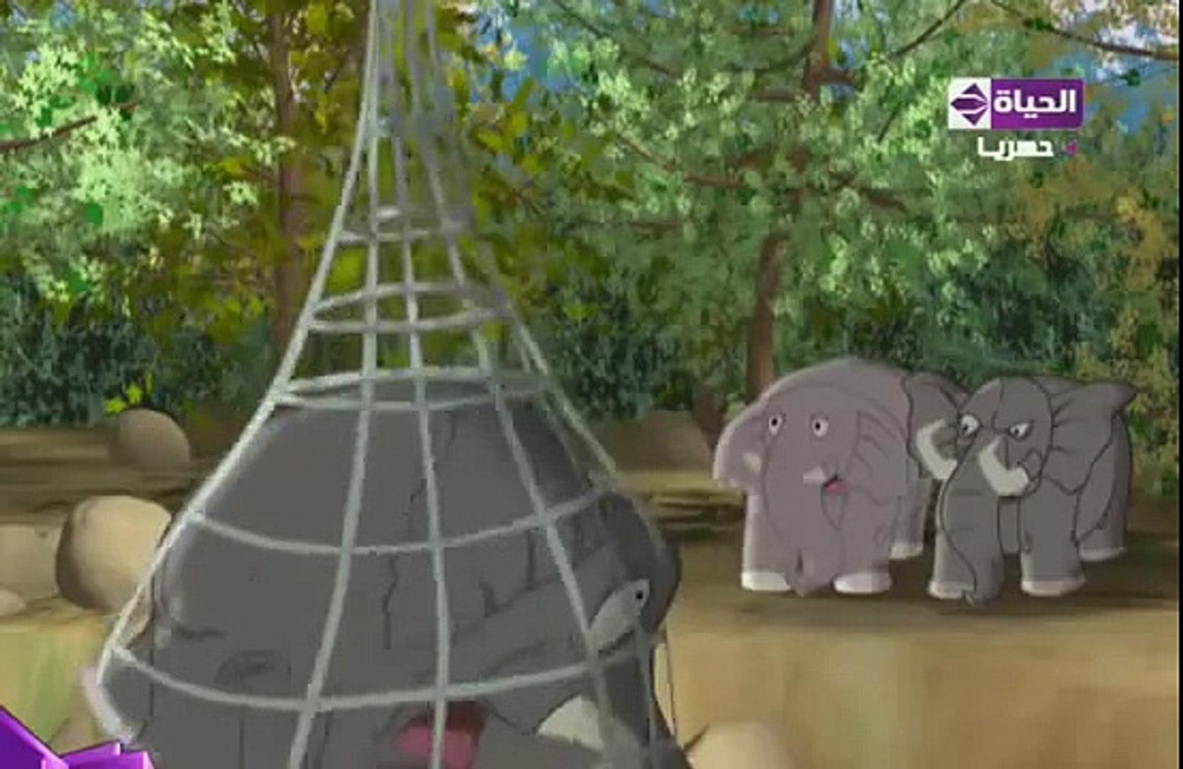 قصص الحيوان في القران- الفيل وهدم الكعبة1