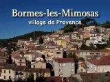 DVD Bormes Les Mimosas