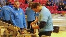 Salon international de l'agriculture de Paris : deux lycéens du Béarn aux 13e Ovinpiades