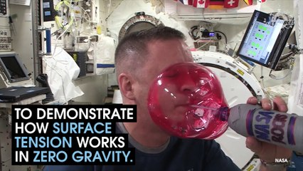 Water Experiments In Space