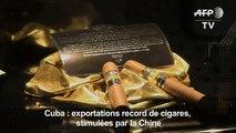 Cuba : exportations record de cigares, stimulées par la Chine