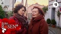 Folge 2601  Hergelockt! ,  Rote Rosen
