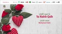 Mohamed fathi - Ya habib qalb (8) | يا حبيب القلب | من أجمل أناشيد | محمد فتحي
