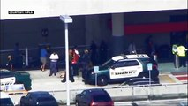 Nine people shot, three fatally at Florida's Fort Lauderdale airport- local media