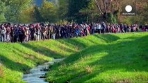 MEPs react to EU-Balkans summit