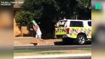 Il recouvre un radar avec un pack de bière sur la tête et devient le nouveau héros des Australiens