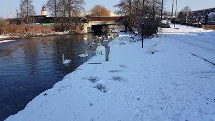 Snow falling Southall UK 2018 PART 1
