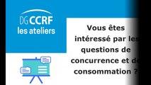 Atelier de la DGCCRF - Places de marché et droit de la concurrence