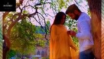teri meri kahani ost|teri meri khani ost full hd video|tere meri khani full ost with lyrics