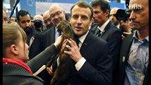 Salon de l'Agriculture : de Macron à Wauquiez, bêtes de politique face aux bêtes de ferme