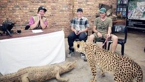 This Cheetah Hated Bilko   Cutting Room Floor