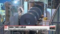 Trump's tariffs on steel imports to impact South Korea's steel industry
