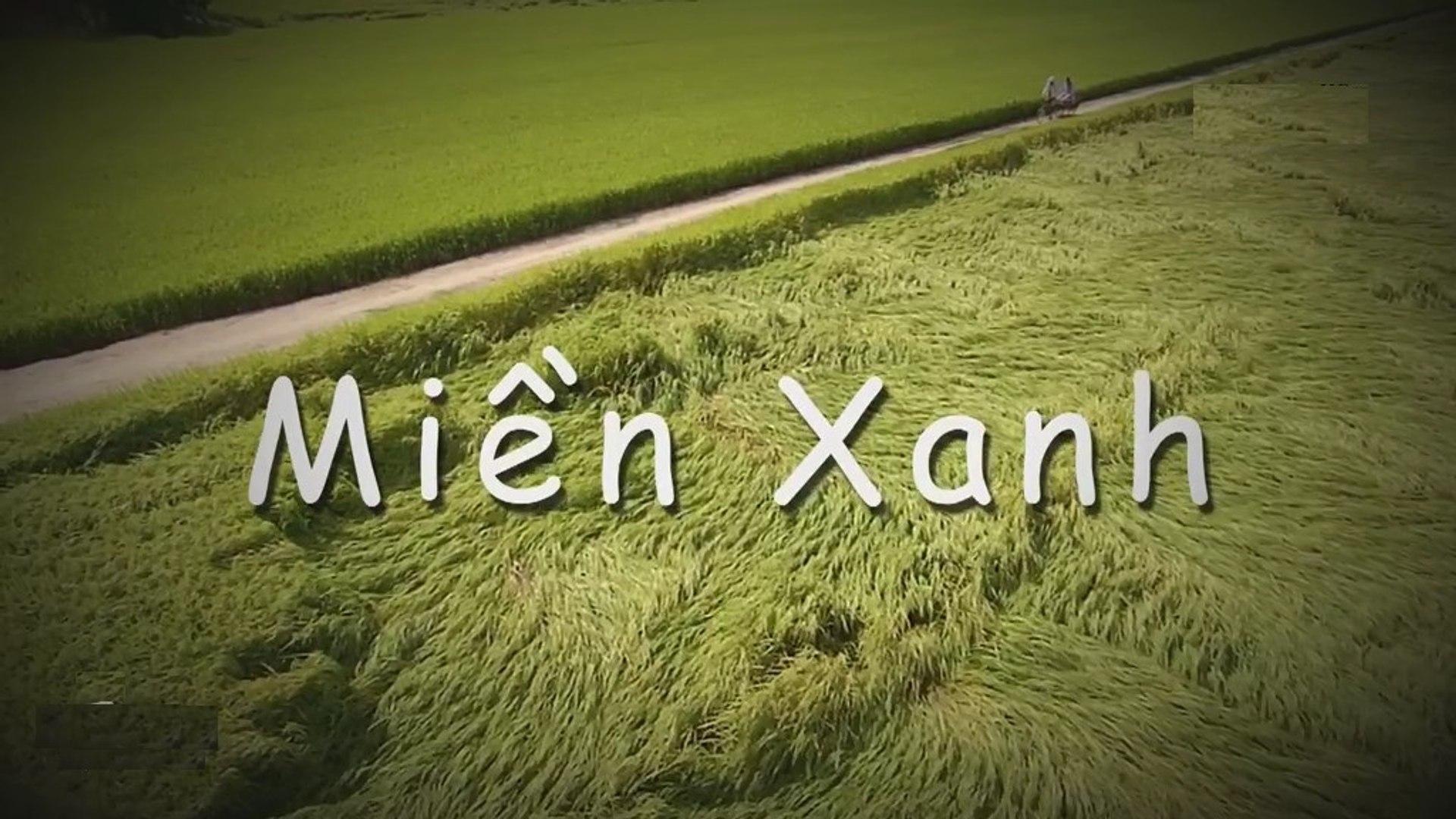 Phim Miền Xanh Tập 26 - Phim Việt Nam (HTV9)