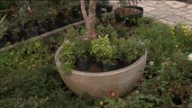 Melhor Escolha  - Como escolher o vaso ideal para cada tipo de planta