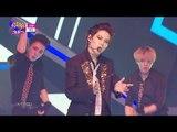 【TVPP】Taemin(SHINee) - Danger, 태민(샤이니) - 괴도 @ 2014 MVP Special, Show Music core Live