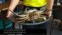 Seafood Island | BEST LIVE FILIPINO CRAB in Cebu Philippines
