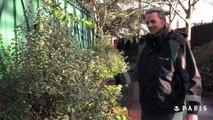 Paris leur dit merci : Sylvain, jardinier à la Ville