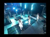 Cool - Cool night, 쿨 - 쿨 나잇, Music Camp 20000506