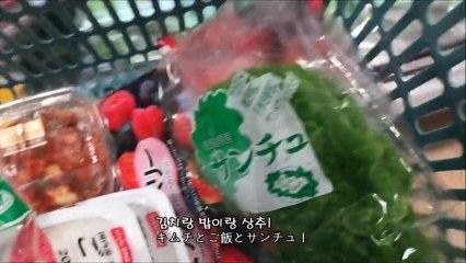 [한일자막]나혼자일본!- 복숭아콜라+교토 전통 염색체험+JLPT결과  일상 95편   [韓日字幕]日本で一人暮らし- コカコーラもも味+京都伝統色染体験+JLPT結果   日常95編 Japan Daily Vlog #95