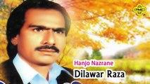 Dilawar Raza - Hanjo Nazrane - Pakistani Saraiki Regional Song