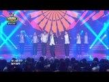 BTS - Boy In Luv, 방탄소년단 - 상남자, Show Champion 20140305