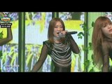 Hyorin (SISTAR) - Sweet Dreams (Beyonce), 효린 (씨스타) - 스윗드림 (비욘세), Show Champion 20140319