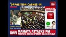 Mamata Banerjee Speaks At Jantar Mantar Protesting Against Demonetization
