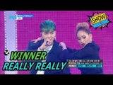 [HOT] WINNER - REALLY REALLY, 위너 - 릴리릴리 Show Music core 20170506