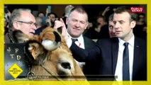 Com' une image - Déshabillons-les - Les politiques au Salon de l'agriculture