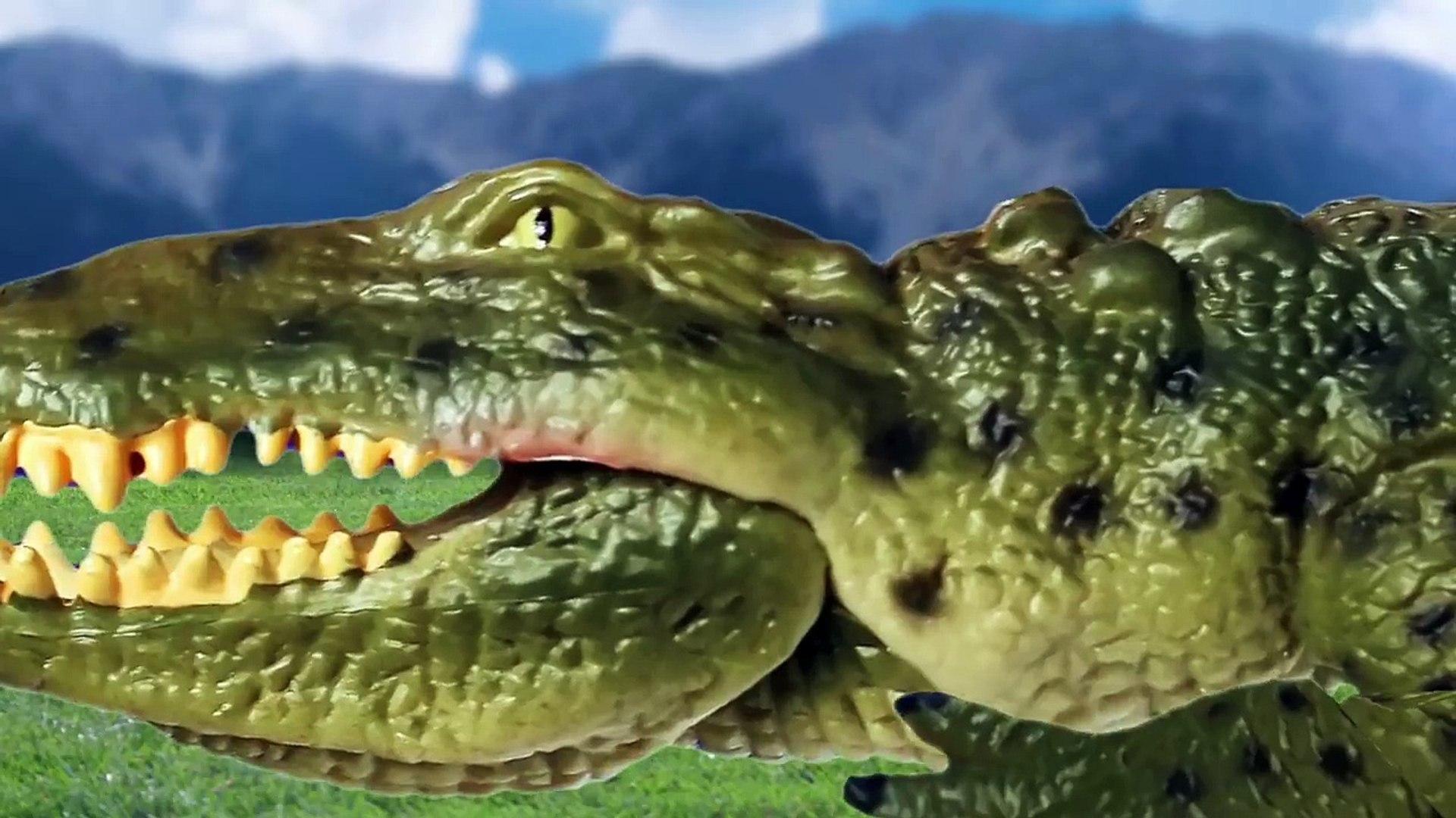 [EN] #62 Hungry crocodile likes Sharks, kids education Collecta figureㅣCoCosToy