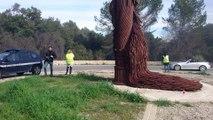 Les salariés de Galderma, en grève, font brûler pneus, palettes et fumigènes devant le site
