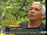 Cantv's support to farmers brings Venezuela closer to food sovereignty