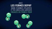 FERME DEPHY