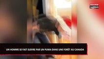 Un homme a la très mauvaise idée de descendre ses escaliers avec une luge enflammée (Vidéo)
