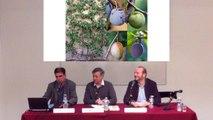Rencontres des Gobelins | Versailles et la théâtralité du souper : côté cours, côté jardin (2/2)
