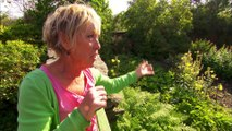 Great British Garden Revival, Cottage Gardens and House Plants, Ep 3