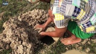 Amazing Muddy soil Hole Trap - Smart Man Build Fish Trap By Muddy soil- Get Alot of Fish 100%